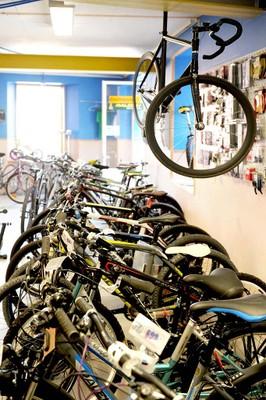 Les nombreux vélos chez Mob y cycles